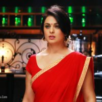 Anjana Sukhani Photos- laal Ishq marathi Movie